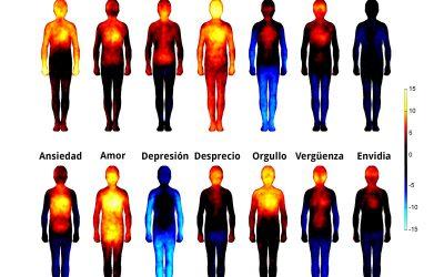 Emociones: Qué son las emociones, funciones, tipos…